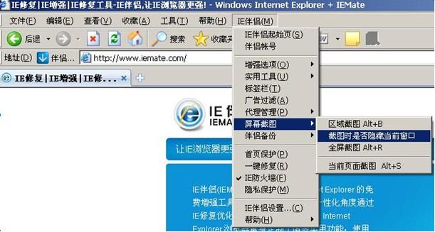 IE伴侣截图操作流程图4
